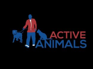 Active Animals Dog Walking & Pet Sitting Services